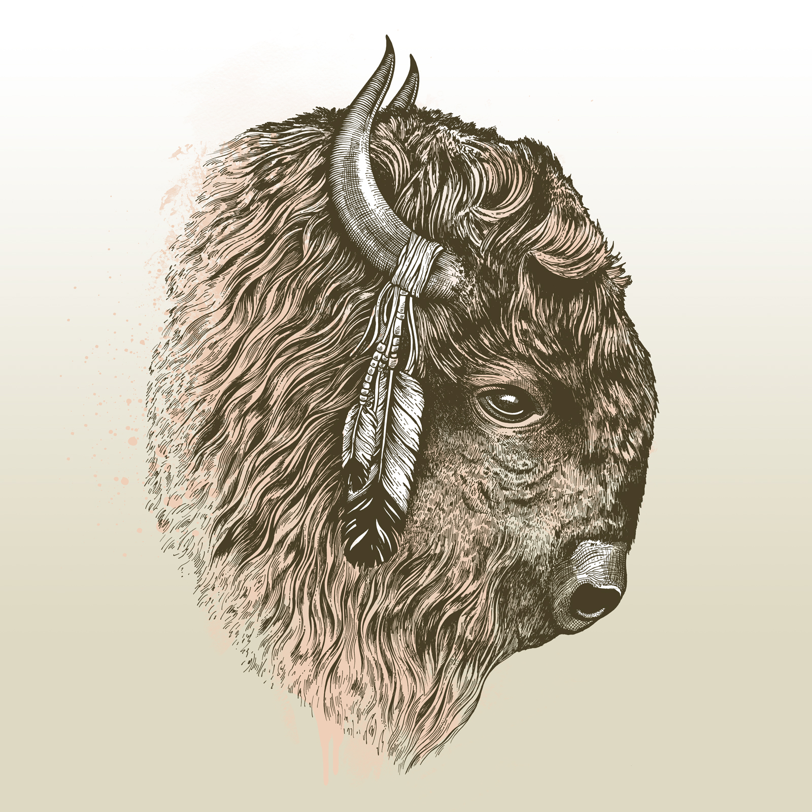 American Bison Head Bison Head Line Drawing
