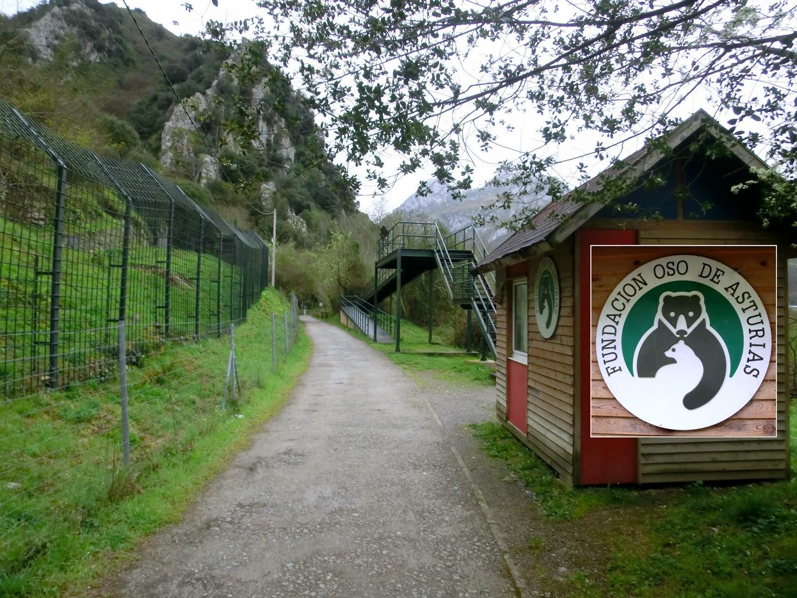 Pindio, pindio: Senda del Oso (Tuñón-Entrago-Cueva Huerta)