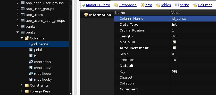 sql database programming with java pdf