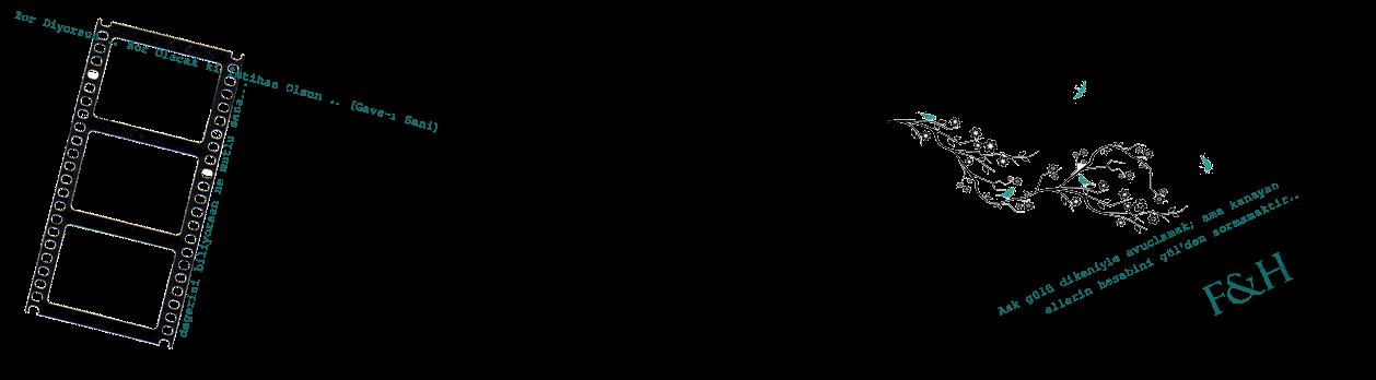 Petrolmavilim