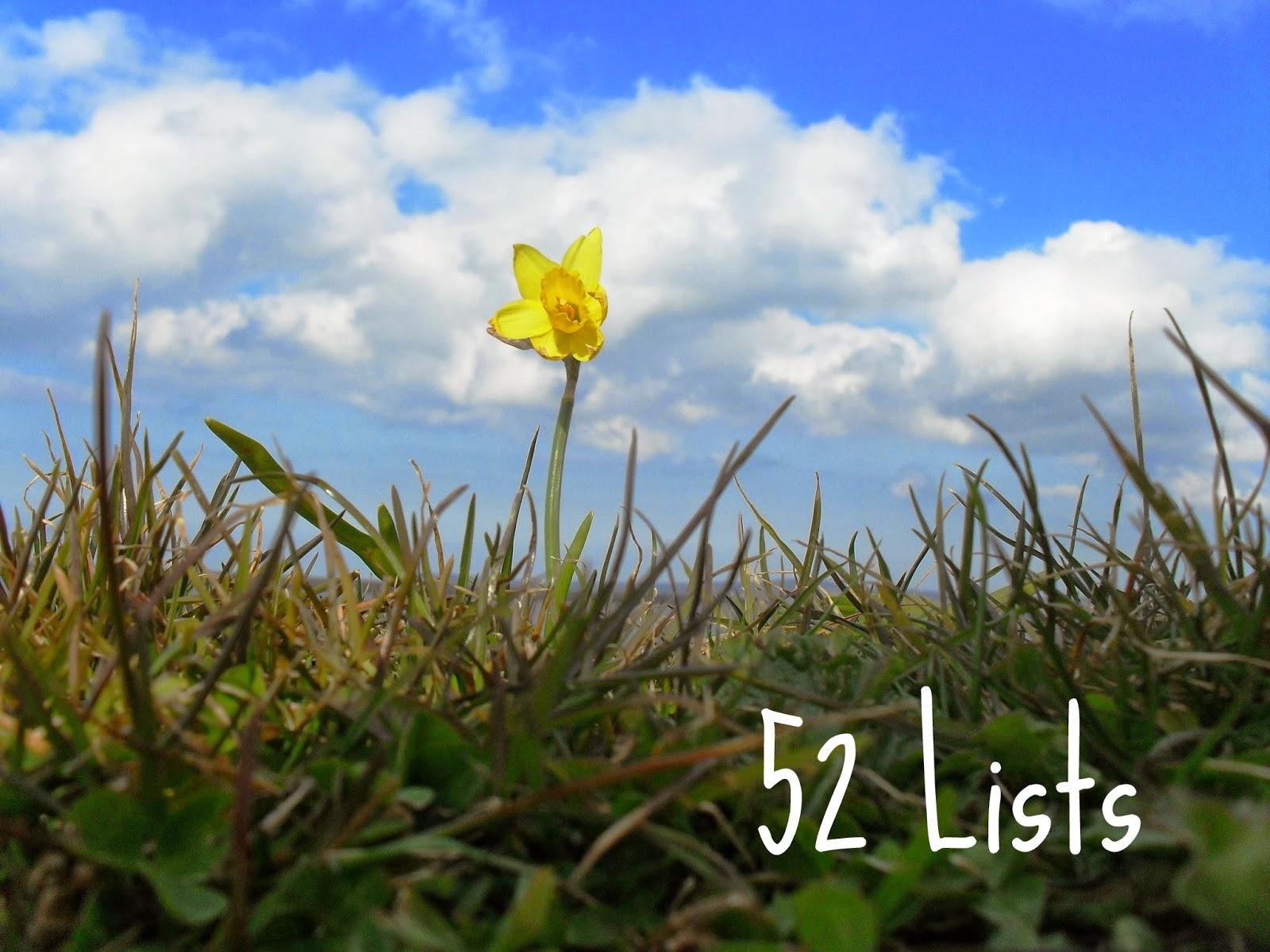 One lone daffodil