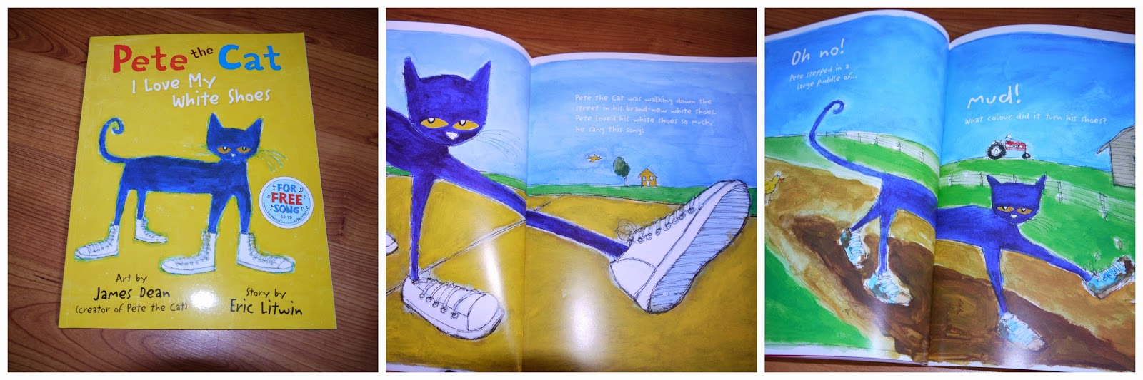 Pete the Cat, storybook