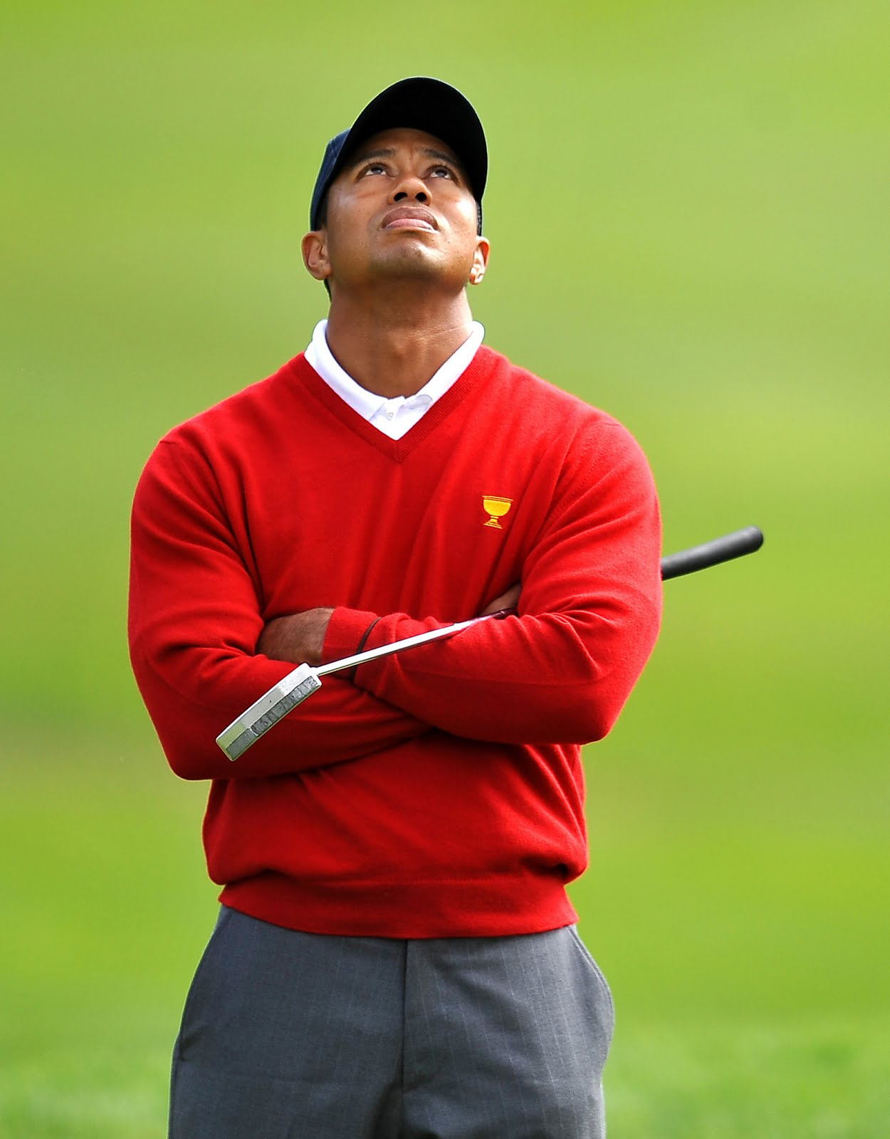 Informations Videos And Wallpapers Tiger Woods