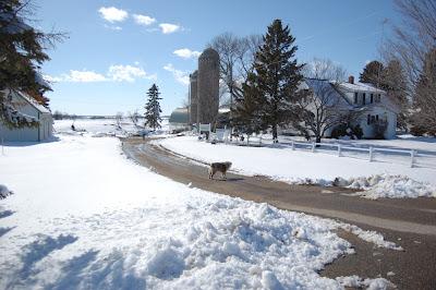 twelve inches of April snow