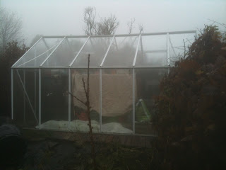 How to keep a greenhouse clean