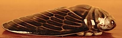 http://fr.wikipedia.org/wiki/Gryllidae