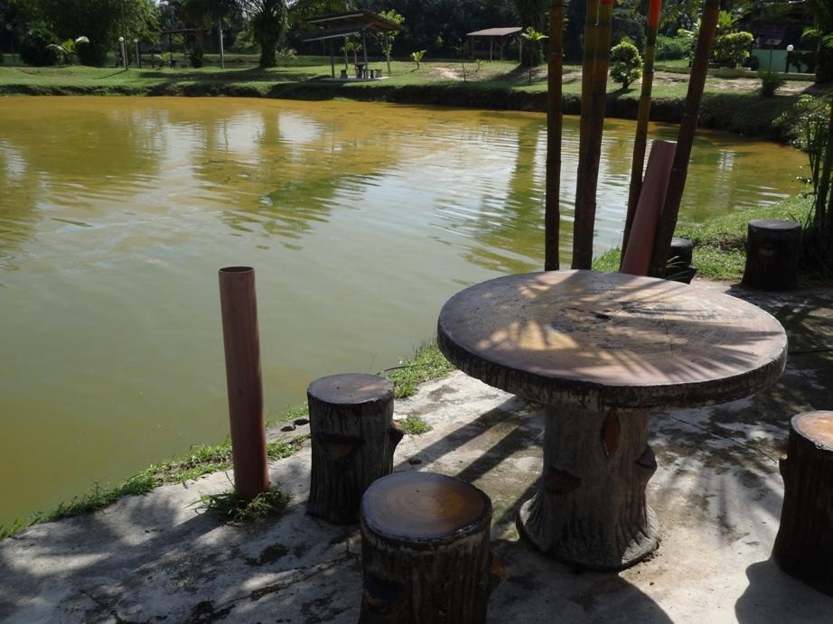 Fishing spots in kuala lumpur selangor rabok bay for Freshwater pond fish