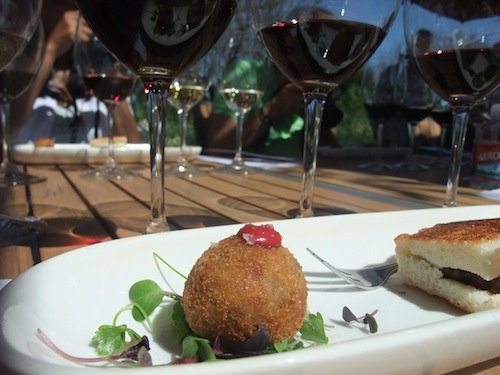 Pinot Noir with Mushroom Arancini with Sottocenere Truffle Cheese and Pinot Noir Aioli