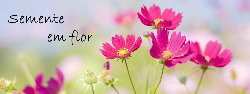 Semente em flor