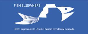 ¡Detén la pesca de la UE en el Sahara Occidental ocupado!