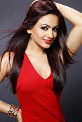 Actress Aksha glamorous photos-thumbnail-13