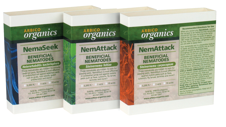 Arbico organics organic gardening and pest control blog for Beneficial nematodes for termites