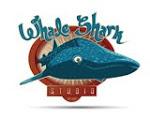 Whale Shark Studio