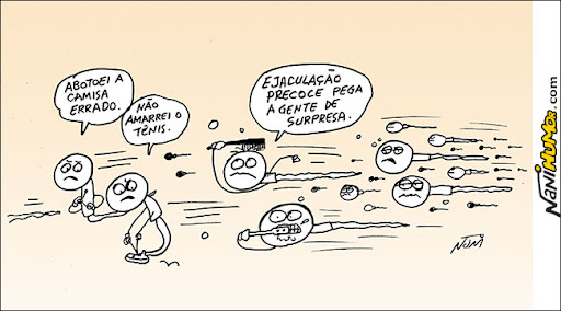 Os Espermazozóides