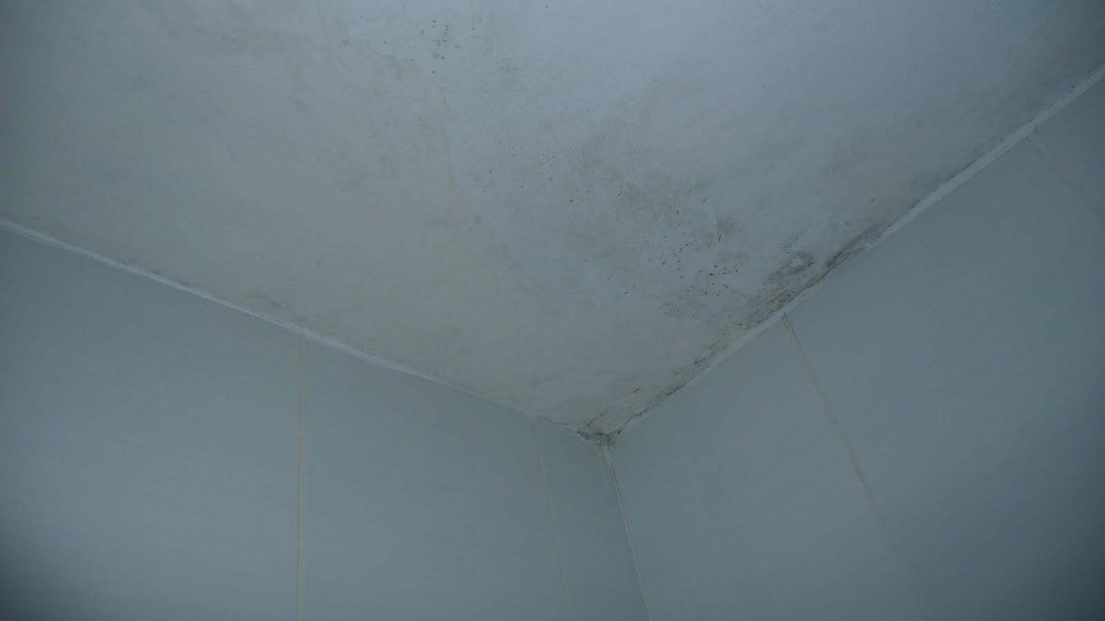 De rehabilitaci n i t e s y otras cuestiones humedad por - Humedad por condensacion en paredes ...