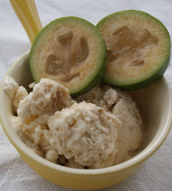 Easy Feijoa Ice Cream Recipe Photo Credit Lucy Corry/The Kitchenmaid
