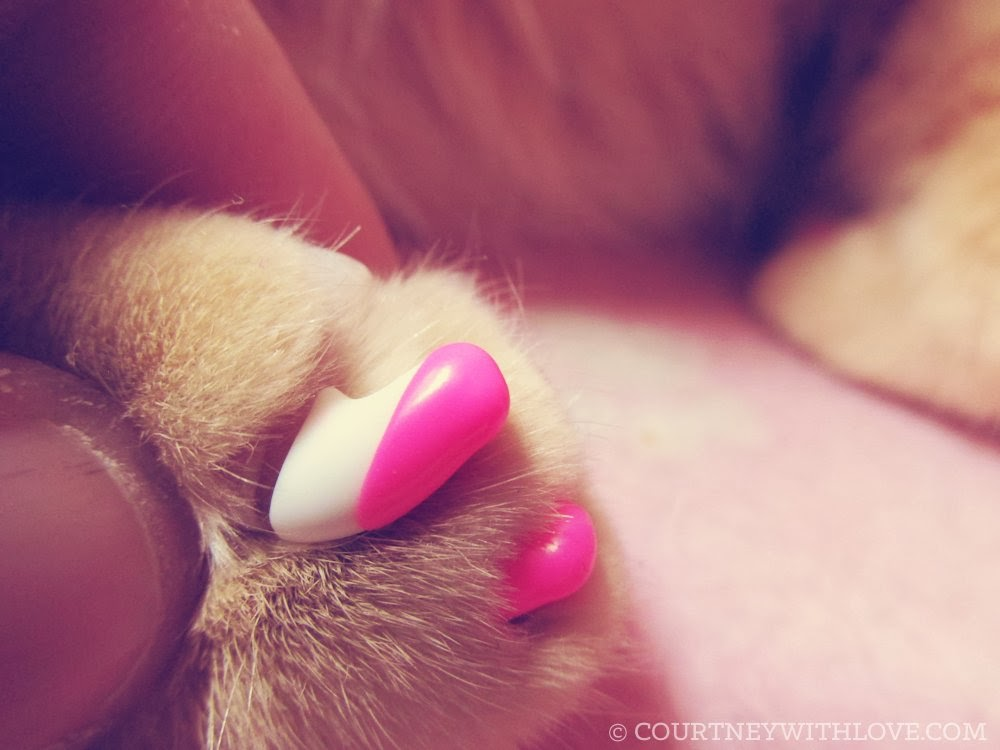 Courtney, With Love: Overview: Using Kitty Caps Nail Covers