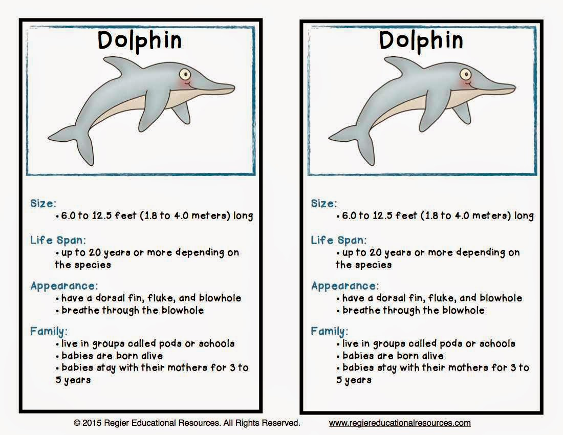 Uncategorized Information Reports On Animals the best of teacher entrepreneurs iii science lesson under visit my blog tpt store or pinterest boards for more ideas and freebies your classroom