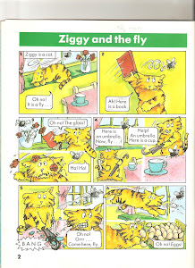 Ziggy and the fly