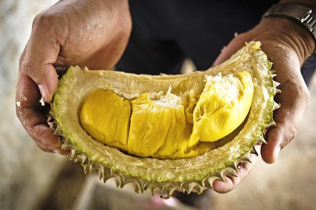 Buah Durian
