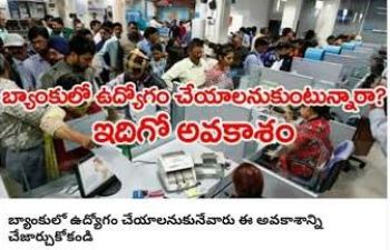 Andhra Bank Sub Staff Recruitment