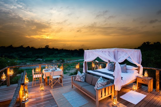 Safari Fusion blog | African treehouses | Stylish tree lodgings at Lion Sands Tinyeleti Treehouse, South Africa