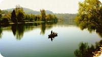 Bootsausflug, Boot auf dem Rhein, Romantisch, Boot fahren, Ausflug