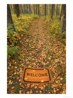 542680welcome-mat-on-forest-trail-poster