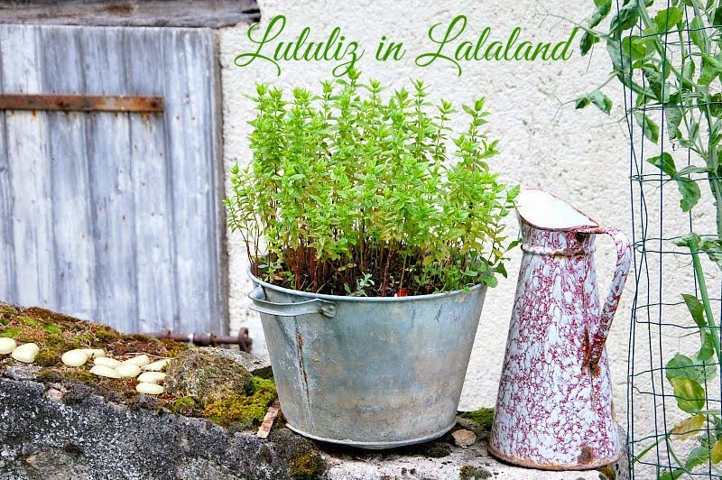 Lululiz in Lalaland