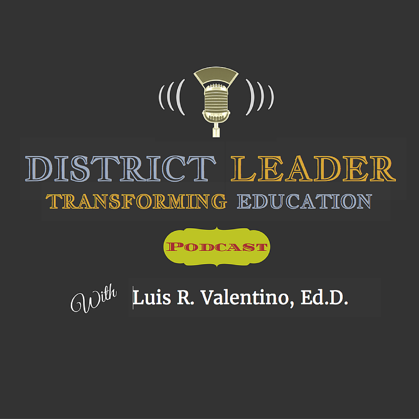 District Leader