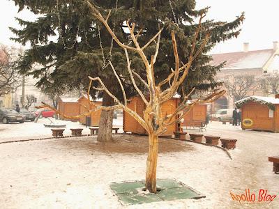 Gheorgheni, parcul central