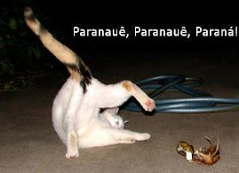 Dona Gata jogando capoeira