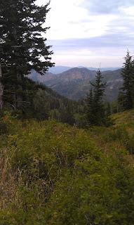 Alexander Basin Trail