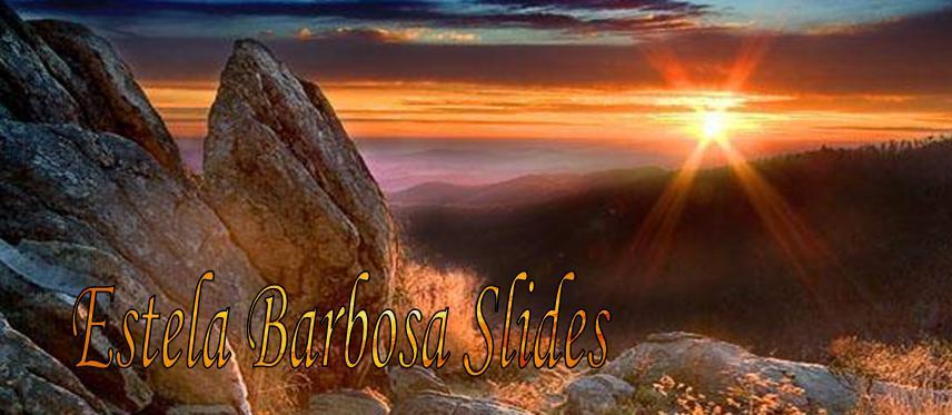 Estela Barbosa Slides