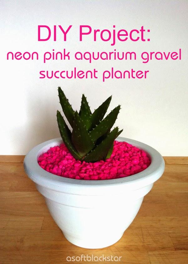 DIY neon pink gravel succulent planter