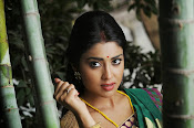 Shriya Saran latest Photos in saree-thumbnail-11