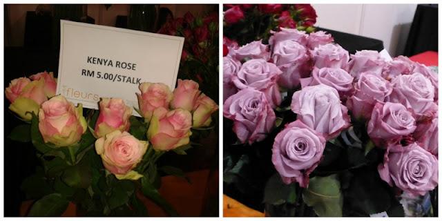 kenya-roses-pink-lilac