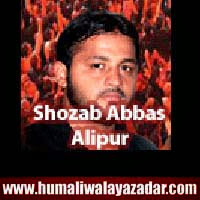 http://ishqehaider.blogspot.com/2013/11/shozab-abbas-alipur-nohay-2014.html