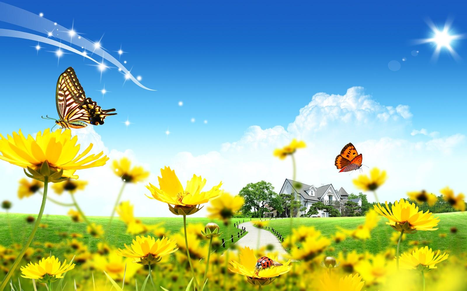 Beautiful Summer Season in the World