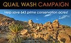 HELP SAVE LAND IN THE MOJAVE DESERT