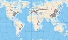Mapa del Bioma Templado