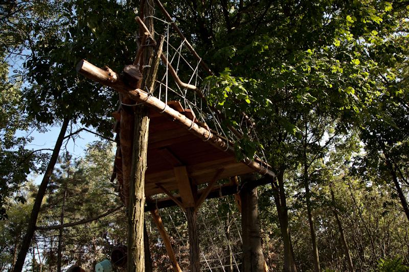 Make and Play: A Treehouse / Kućica na drvetu