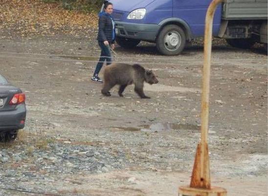 Saksikan Gambar Pelik Hanya di Russia