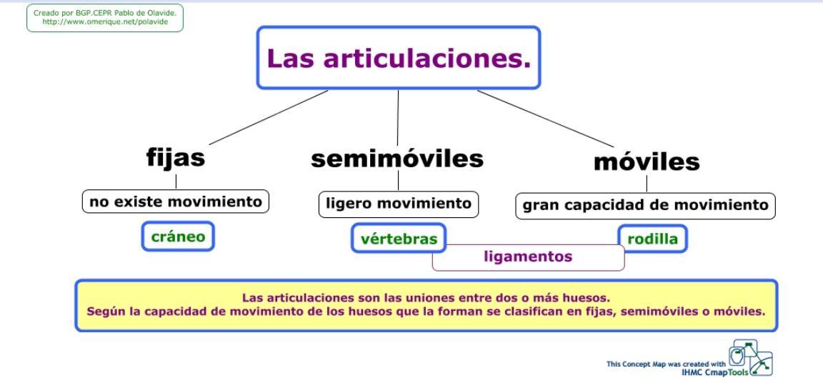 RINCÓN DE CLASE: MAPA CONCEPTUAL DE LAS ARTICULACIONES