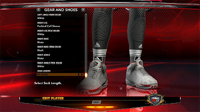 NBA 2K13 Rose Adidas Accesories Patch (Brace)