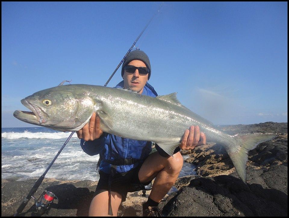 La pesca a la anaconda