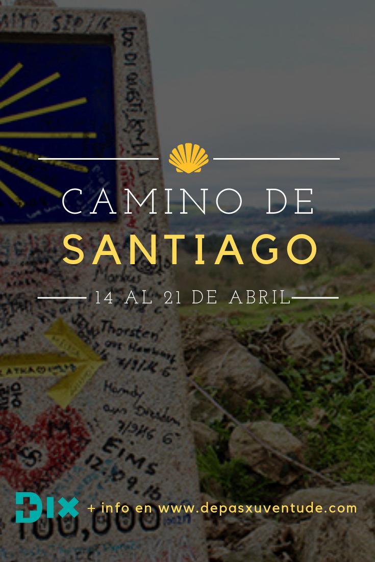 CAMINO DE SANTIAGO `19