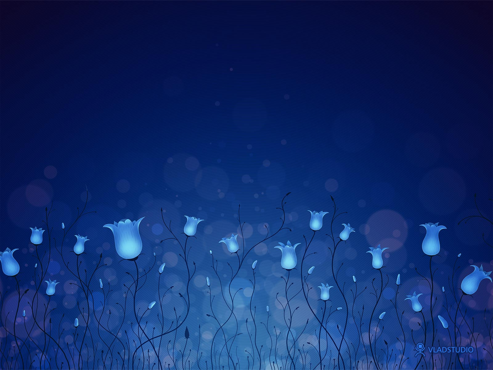 http://2.bp.blogspot.com/-Sl7X5uXEgJs/ThQMk9mJiHI/AAAAAAAAAYg/M6bygkSM1nU/s1600/blue_lighting_flowers-normal.jpg