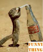 Drink it!!
