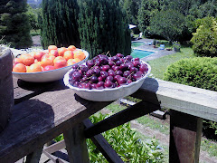 Frutas del Huerto